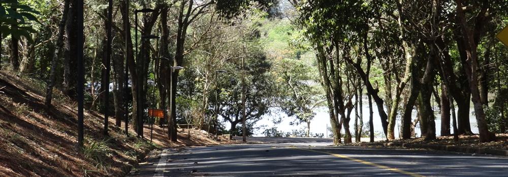 Calle del lago